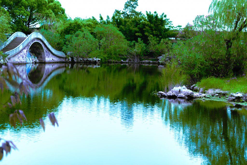 蠡園の風景10