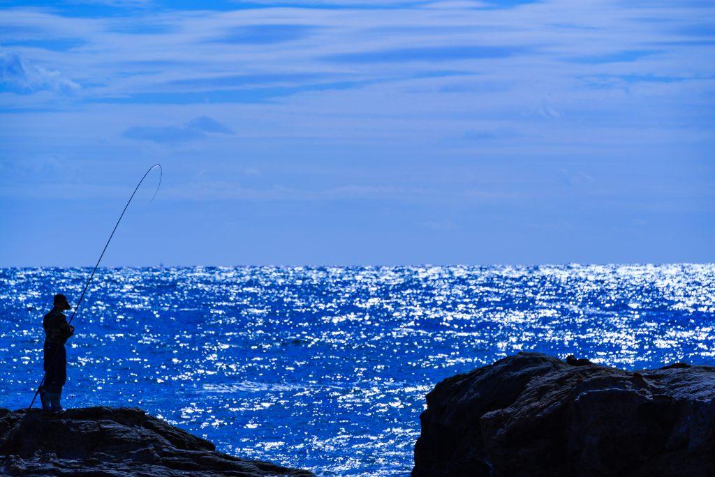 仁右衛門島の風景3