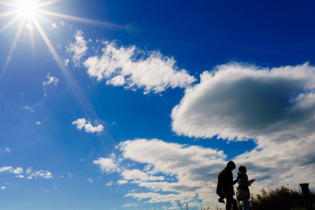 仁右衛門島の風景4